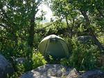 Kallioiden kätköissä on pieniä lehtoja, joista löytyy suojaisia paikkoja teltalle