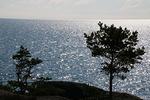 Veden välkkeessä ja rannattomassa horisontissa on jotain salaperäisellä tavalla lumoavaa
