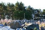 Matkan jatkuessa näemme Stångskärin rantakivikossa ainakin kolme metriä korkean harmaantuneen ristin.